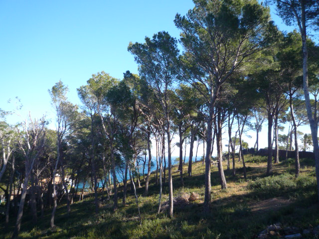04093 - Excellent plot with sea views in Sa Riera, Begur