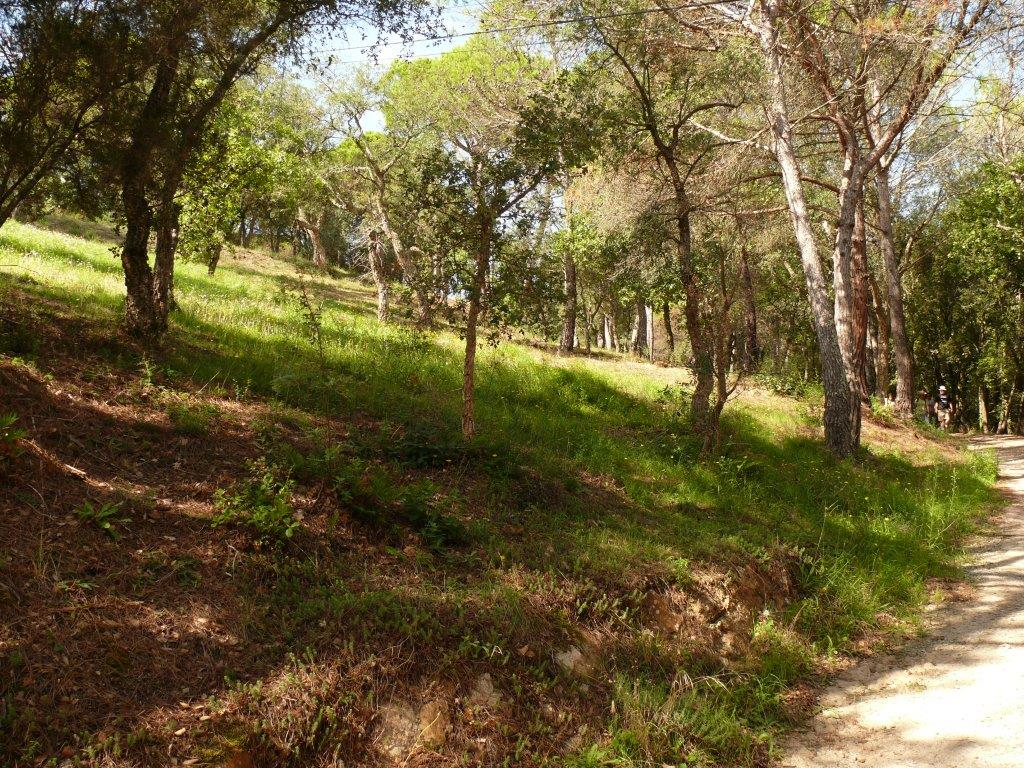 04094 - Plot in urbanization and beautiful countryside in Sta. Cristina de Aro